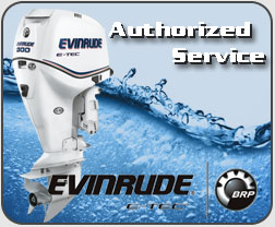 Evinrude outboard authorized service center nz
